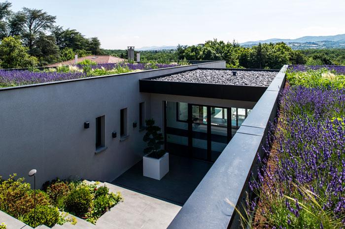 Rainwater-filtering flat roof
