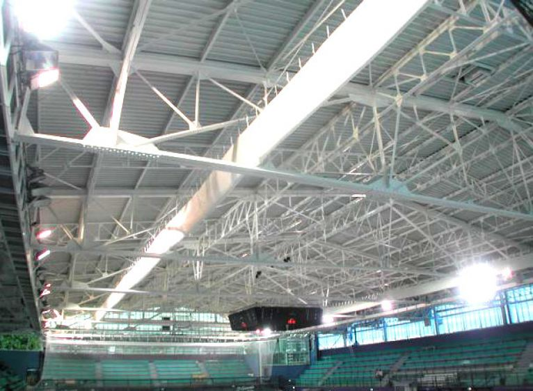 Large roof supporting structure