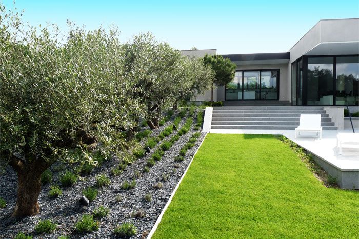 Garden and terrace of a contemporary house