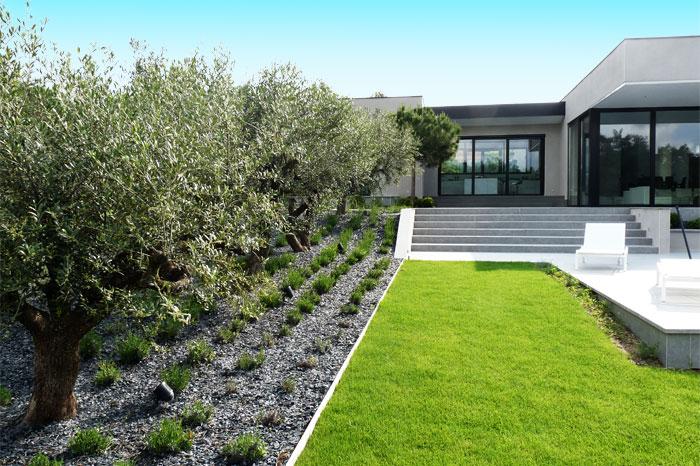 Garden and terrace of a contemporary house